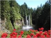 Summer Waterfall with Red Flowers