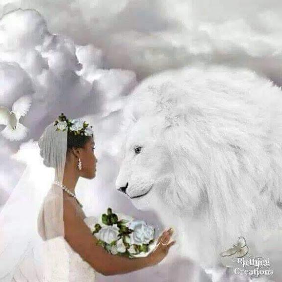 White Lion Wedding